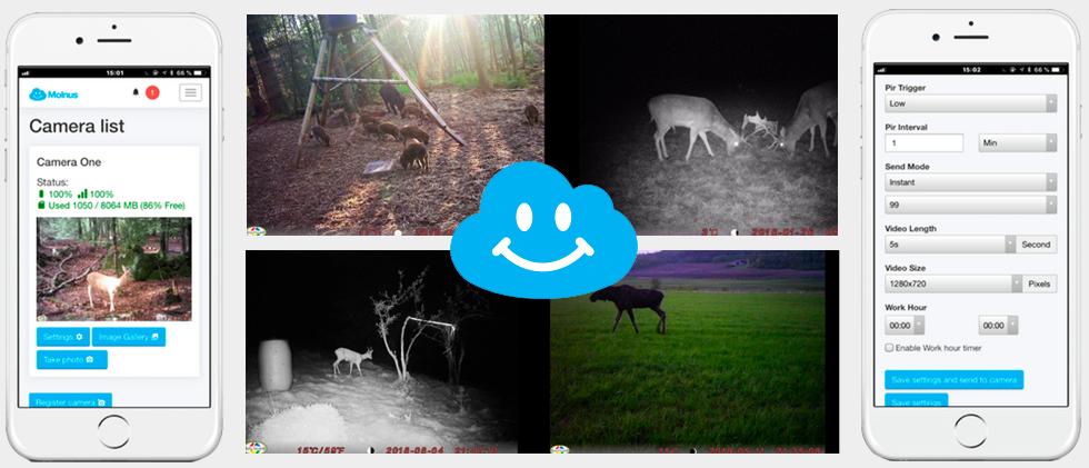 Molnus  - приложение для фотоловушек Bolyguard